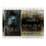New Year - Golden Elegance - Newfoundland Postcard