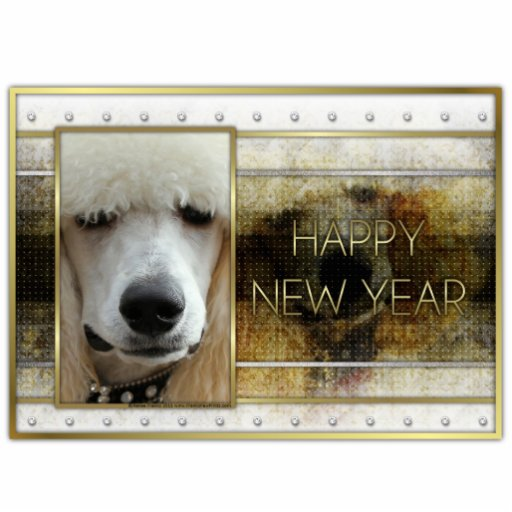New Year - Golden Elegance - Poodle Apricot Photo Sculptures