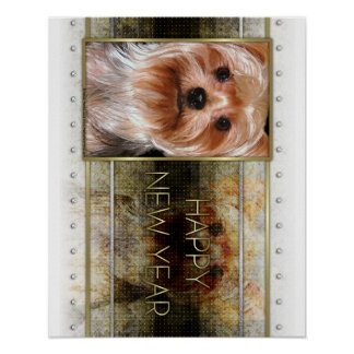 New Year - Golden Elegance - Yorkshire Terrier Poster