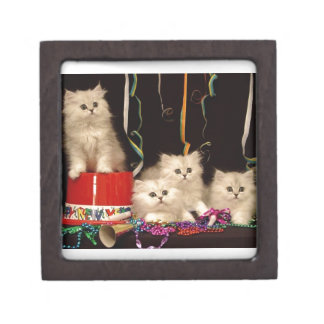 New Year's Eve Party Kittens Jewelry Box