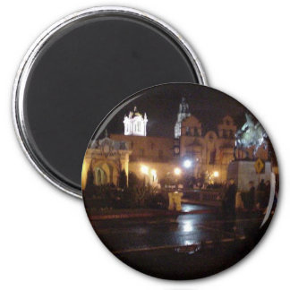 New Years Lights In Balboa Park Magnets