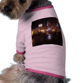 New Years Lights In Balboa Park Pet Tee Shirt