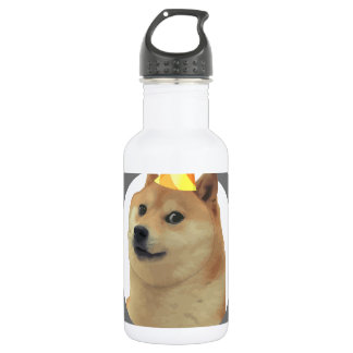 New Years Resolution Doge Stainless Steel Water Bottle