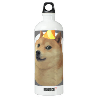 New Years Resolution Doge Water Bottle