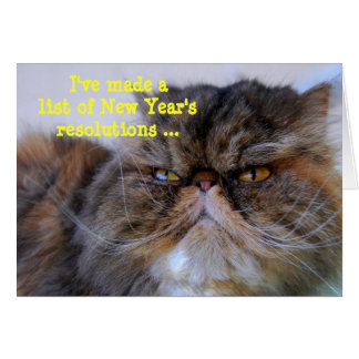New Year's Resolutions Calico Persian Kitty Card