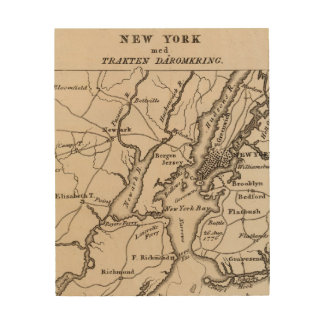 New York and New Jersey Region Wood Print