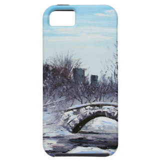 New York Art, Central Park, Landscape iPhone SE/5/5s Case
