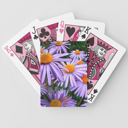 New York Aster Bicycle Card Deck