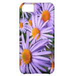 New York Aster iPhone 5C Case