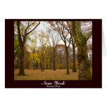 New York Card Central Park New York Souvenir Card
