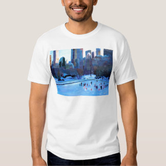 New York Central Park Ice And Winter In Manhattan T-Shirt
