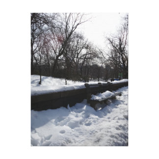 New York Central Park in February Canvas Print