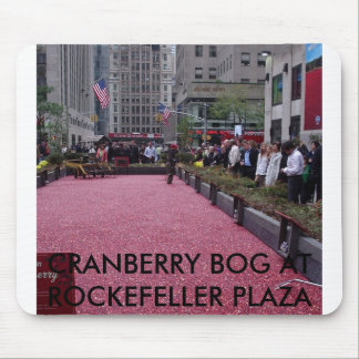 NEW YORK CITY 2007, CRANBERRY BOG AT ROCKEFELLE... MOUSE PAD