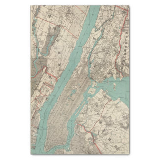 "New York City 2 10"" X 15"" Tissue Paper"