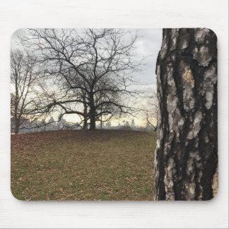New York City Central Park Tree Sunrise Skyline Mouse Pad