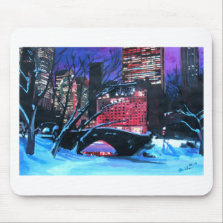 New York City - Central Park Winter Mouse Pad