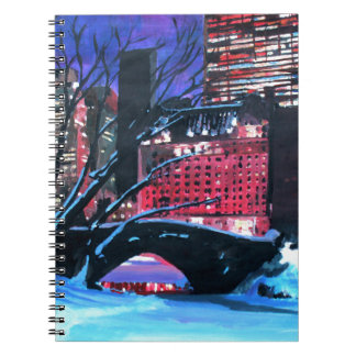 New York City - Central Park Winter Notebook