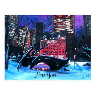 New York City - Central Park Winter Postcard