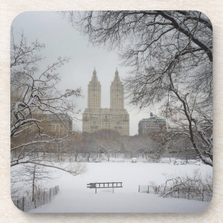 New York City Decorative- Central Park Winter Drink Coaster