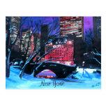 New York City - invierno del Central Park Tarjetas Postales