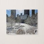 New York City Manhattan Central Park Jigsaw Puzzle Jigsaw Puzzles