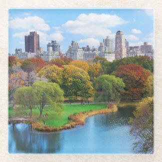 New York City Manhattan Central Park Panorama Glass Coaster