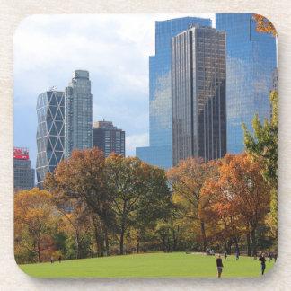 New York City Manhattan skyline panorama viewed fr Coaster