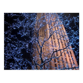 New York City Night Walk CricketDiane Postcard