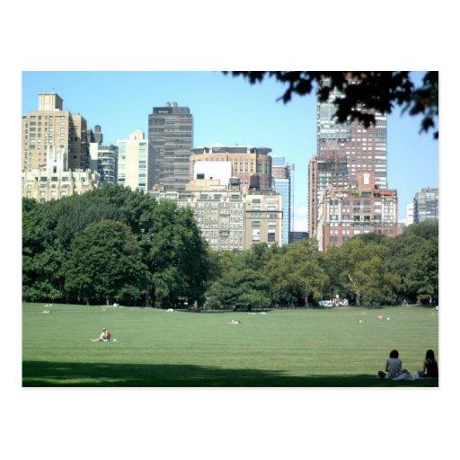 New York City Postcards