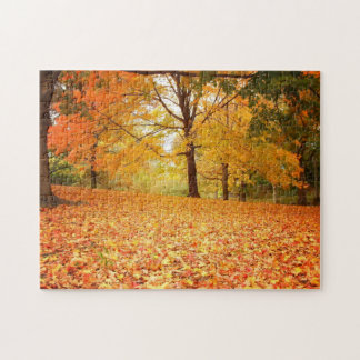 New York City Puzzle -  Central Park Autumn Leaves