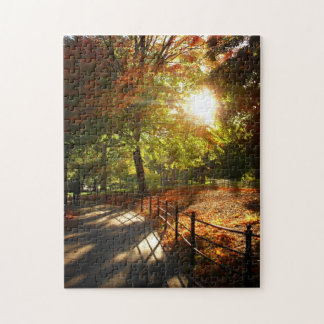 New York City Puzzle -  Central Park Autumn Path