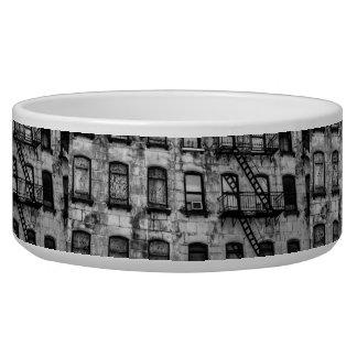 New York City Street Urban Photo Dog Water Bowl