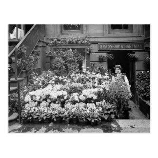 New York Flower Shop, 1895 Postcard
