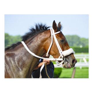 New York Horse Racing Postcard