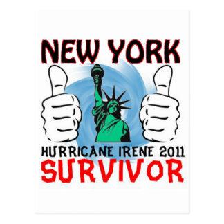 New York Hurricane Irene Survivor Postcard