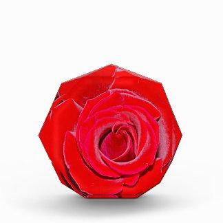 New York I Love New York (Rose) Award