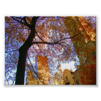 New York in the Fall Poster