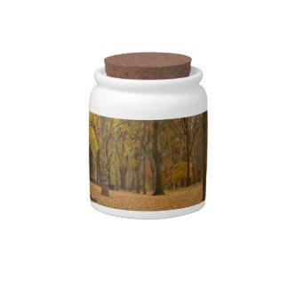 New York Jar Central Park Souvenir Candy Jar