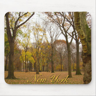 New York Mousepad Central Park New York Gifts