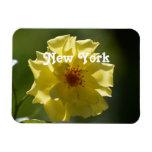 New York Roses Vinyl Magnet