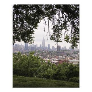 New York Skyline Through Trees Photo Print