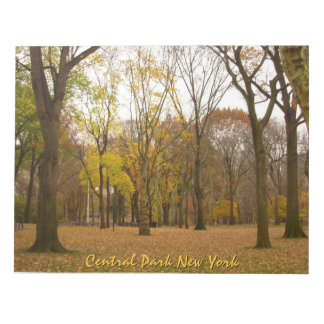 New York Souvenir Notepad Central Park NYC Gift