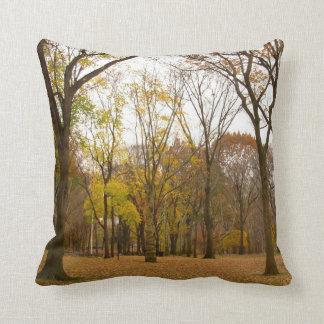 New York Souvenir Pillow NY Central Park Pillow