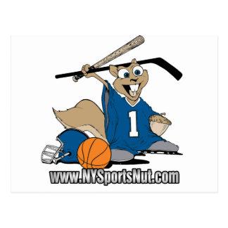 New York Sports Nut Postcard