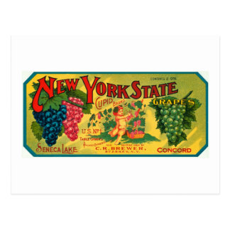 New York State Grapes Ad vintage label Postcard