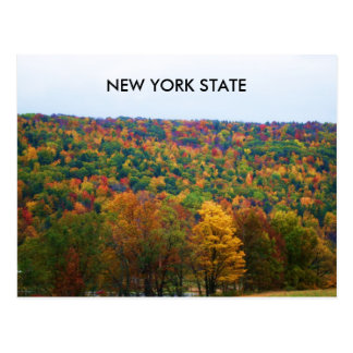 NEW YORK STATE IN AUTUMN postcard