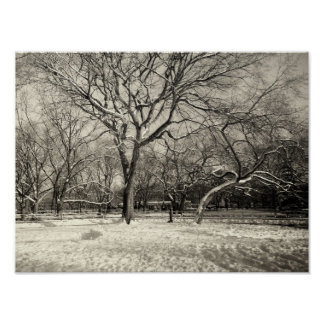New York Winter - East Village Snow Poster