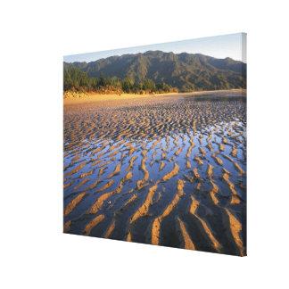 New Zealand, Abel Tasman National Park, Coast 2 Canvas Print