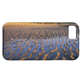 New Zealand, Abel Tasman National Park, Coast 2 iPhone 5 Cover