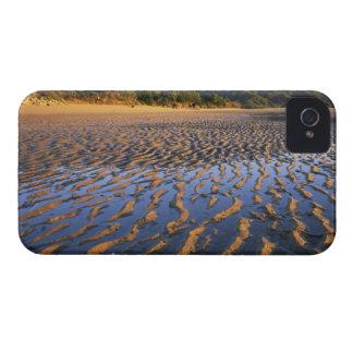 New Zealand, Abel Tasman National Park, Coast 2 Case-Mate Blackberry Case